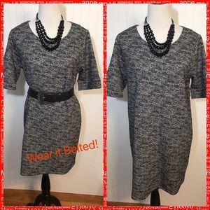 New Adrienne Vittadini Cotton Blend Sheath Dress